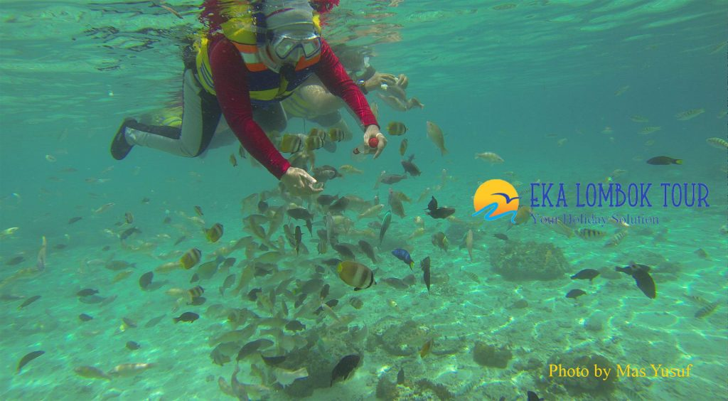 Lombok Holiday Package